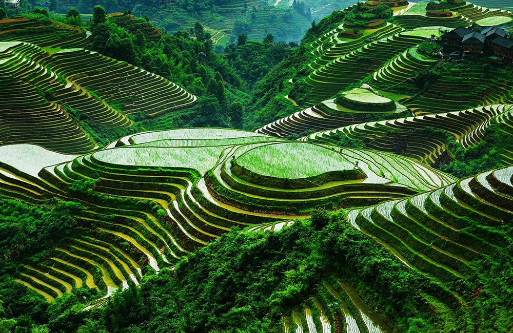 Beautiful places to travel- Banaue Rice Terraces in Philippines
